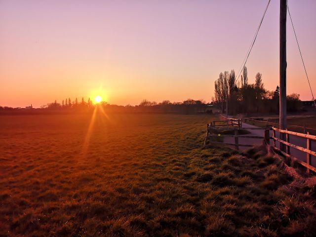 isolated run - sunset