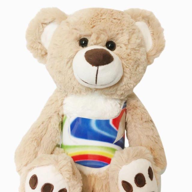 Scoliosis Christmas Gift - Higgy Bear